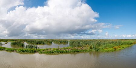 Panorama of marshes on manmade artificial island of Marker Wadden, Markermeer, Netherlands Stock fotó
