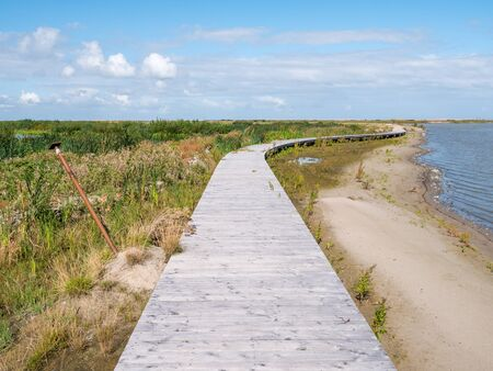 Boardwalk footpath of nature trail on manmade island of Marker Wadden in Markermeer, Netherlands