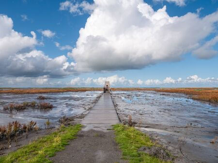 Boardwalk path leading to bird hide on island of Marker Wadden in Markermeer, Netherlands