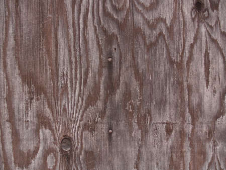 ply: ply wood