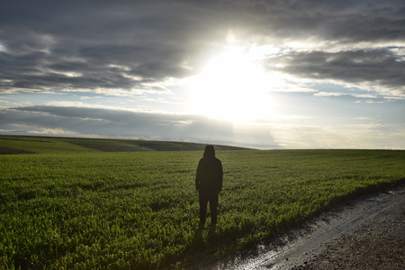 A lone man stands in a field at dusk