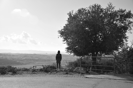 A man stands next to an olive tree. Looking down at the valley below. Imagens