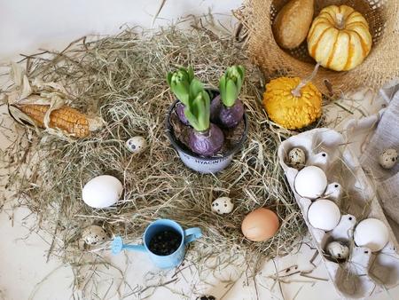 Eggs, package, pumpkins, hay, Easter concept, harvest, holidays, village, farm