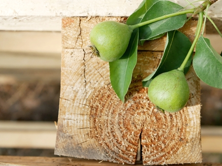 Green pears, leaves, wooden background, summer