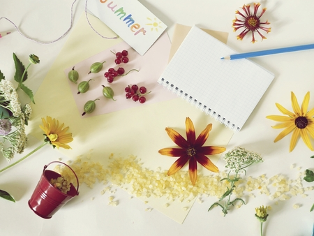 summer, flower, floral, notebook