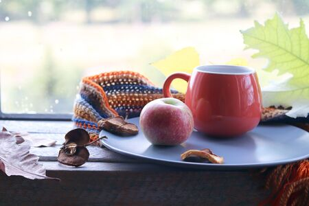 Bright cup with coffee on a window background, autumn Stockfoto