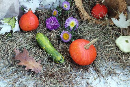 Pumpkins, flowers, leaves, a straw hat, Halloween, Thanksgiving Stockfoto