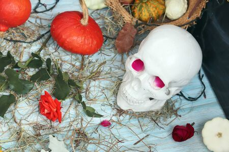 Halloween composition made of imitation skull, pumpkins, roses Banque d'images - 132120527