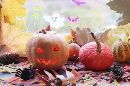 Halloween composition of jack o lantern, pumpkins, illumination