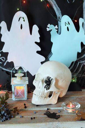 Skull, mystical decor, illumination, interior for Halloween