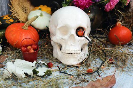 Halloween decorative composition of skulls, pumpkins, leaves, illuminations, mystical decor