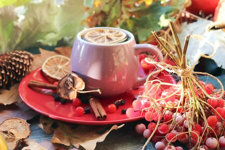 A cup of hot drink, berries, pumpkins, spices, a scarf, autumn leaves on the background of the window, the concept of home comfort, healthy food, tea for the common cold Imagens