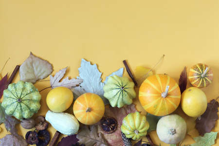 Pumpkins, autumn leaves on a yellow background, top view, congratulations on Thanksgiving Day