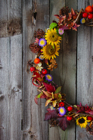 dried flowers: autumn wreath with fresh flowers, dried flowers, berries