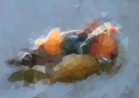 polyhedral: Vector modern abstract polygonal background with bird for design