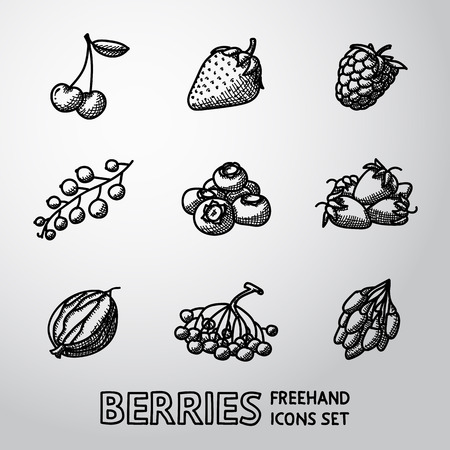 whortleberry: Set of freehand BERRIES icons - cherry and strawberry, raspberry and currant, blueberry, gooseberry, rowan, goji. Vector illustration Illustration