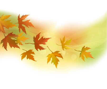 Autumn leaves, background Stock Vector - 17010972
