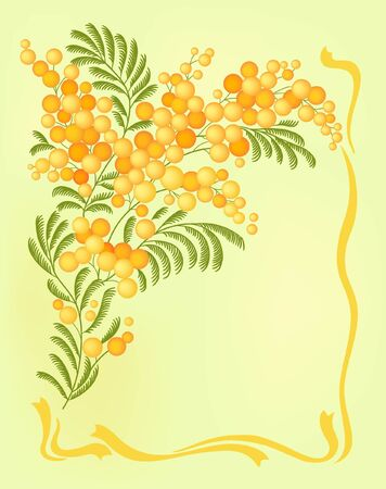 gentile: green card with mimosa Illustration