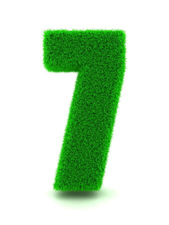 3d Rendering of Grass Number 7 on White Isolated Background. Stock Photo - 11875129