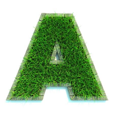 Lettere Bella primavera fatta di erba e circondato da Border Archivio Fotografico - 12296097
