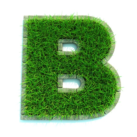 Beautiful Spring Letters Made of Grass and Surrounded with  Border Stock Photo - 12296102