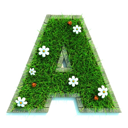 Beautiful Spring Letters made of Grass and Flowers Surrounded with  Border Stock Photo - 12687509