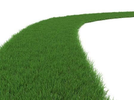 Green Grassy Path Isolated on White Stock Photo - 13299130