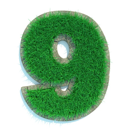 Beautiful Spring Numbers Made of Grass and Surrounded with  Border photo