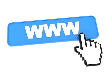 Blue Web Button with WWW on It Stock Photo - 15313481