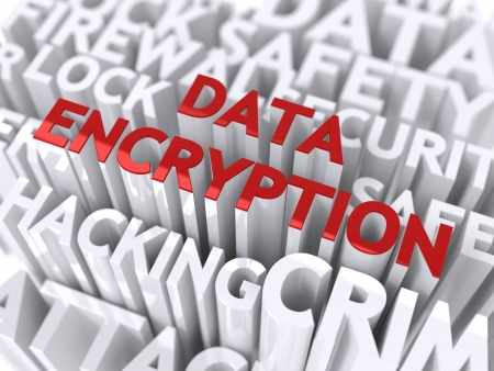 Data Encryption Concept  The Word of Red Color Located over Text of White Color  Stock Photo - 17597913