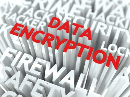 Data Encryption Concept  The Word of Red Color Located over Text of White Color Stock Photo - 17730948