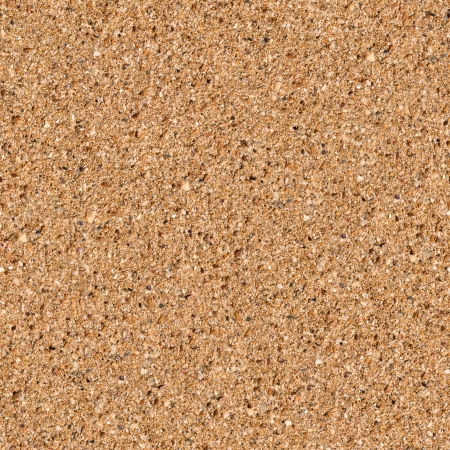 Seamless Tileable Texture of Detailed Sandy Beach  Stock Photo - 19339127