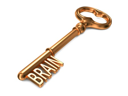 mental object: Brain - Golden Key on White Background. 3D Render. Business Concept. Stock Photo