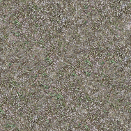 Seamless Texture of Area of Coastal Steppe with Green and Dry Herb