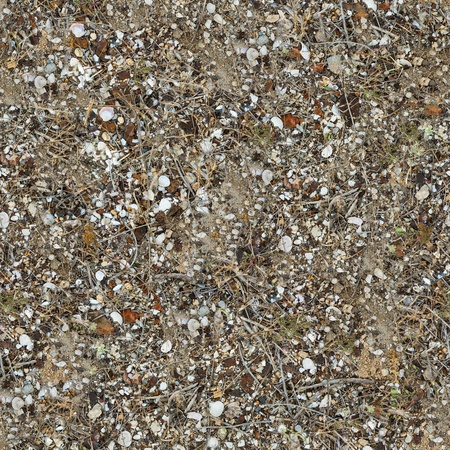 Seamless Texture of the Soil Post-apocalyptic Period with Pieces of Rusted Metal, Broken Glass, Dry Stems of Herb and Shells  Small Size  photo