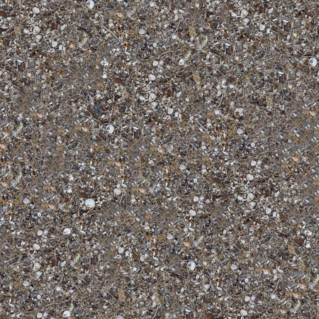 dearth: Seamless Texture of Rocky Steppe Soil with Shells and Pieces of Rusted Metal in the Coastal Zone, Covered with Withered Grass