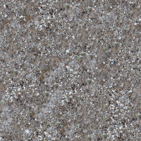 Seamless Texture of Sandy Strip of Coastal Land with Pebbles, Shells and Dry Grass  photo