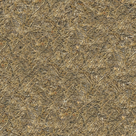 daremny: Seamless Texture gleby Pokryte wyschnięta trawa.
