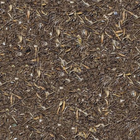 daremny: Bez szwu tileable Tekstury ziemi pokryte suchej trawy i liści