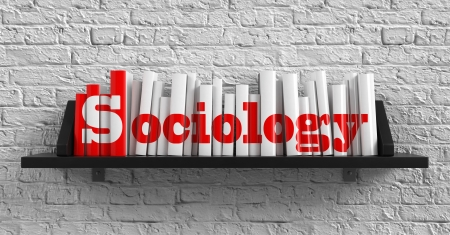 institutions: Sociology - Red Inscription on the Books on Shelf on the White Brick Wall Background. Education Concept. Stock Photo