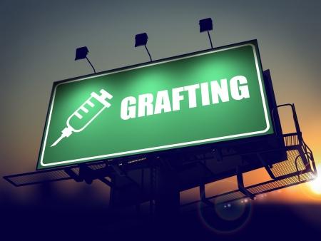 antigenic: Grafting with Syringe Icon - Green Billboard on the Rising Sun. Stock Photo