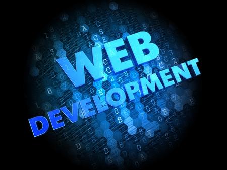 Web Development - Blue Color Text on Dark Digital Background. Stock Photo - 25049944