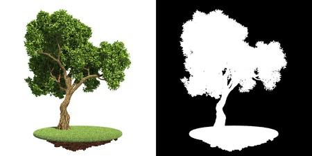 groene boom: Park's Green Tree on Grass Island op Wit met Detail Raster Mask.