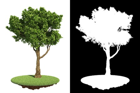 frondage: Decorative Parks Green Tree on Grass Island on White with Detail Raster Mask.