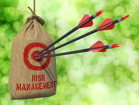 financial diversification: Risk Management - Three Arrows Hit in Red Target on a Hanging Sack on Green Bokeh Background.