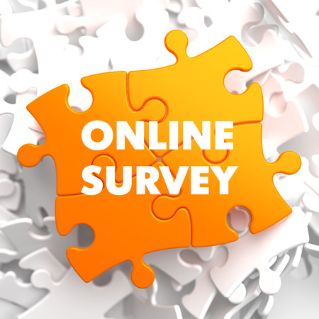 online survey: Online Survey on Orange Puzzle on White Background. Stock Photo