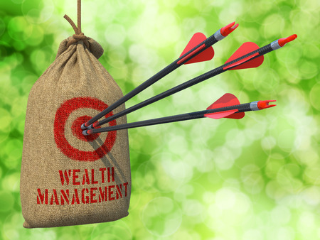 wealth management: Wealth Management - Three Arrows Hit in Red Target on a Hanging Sack on Natural Bokeh Background. Stock Photo