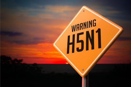 h5n1: H5N1 on Warning Road Sign on Sunset Sky Background.
