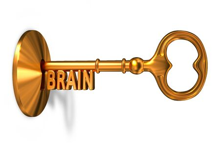 inserted: Brain - Golden Key is Inserted into the Keyhole Isolated on White Background Stock Photo