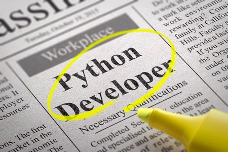 Python-Entwickler Vacancy in Zeitung. Jobsuche Konzept. Standard-Bild